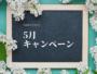千葉市ヨガスタジオ ・ヨガソルナ5月キャンペーン